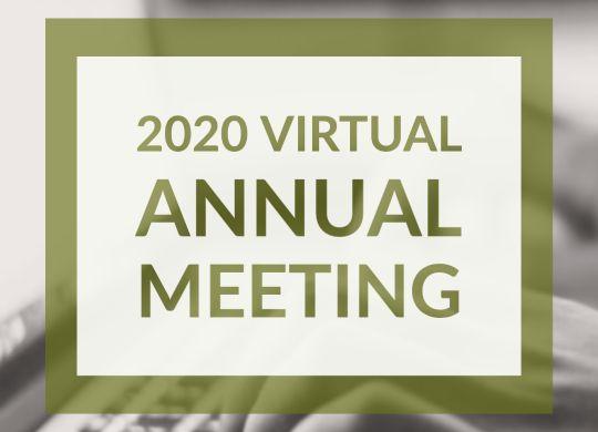2020 Virtual Annual Meeting Insta